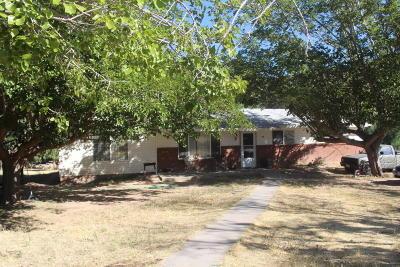Gunlock Single Family Home For Sale: 218 N Main St