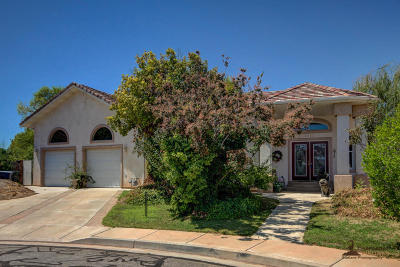 Santa Clara Single Family Home For Sale: 3593 Dutch Cir