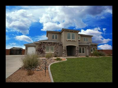 St George Single Family Home For Sale: 2981 E Crimson Ridge