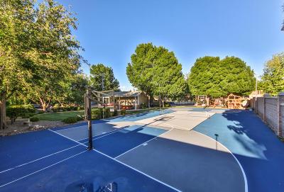 Santa Clara Single Family Home For Sale: 2537 Vineyard Dr