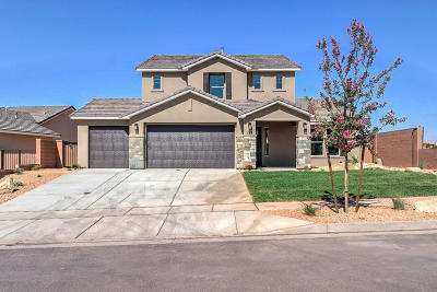 Washington Single Family Home For Sale: 281 N Sage Crest Dr