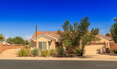 Ivins, Santa Clara, St George, Washington Single Family Home For Sale: 4567 S Big River
