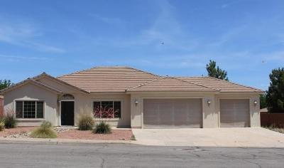 Ivins Single Family Home For Sale: 163 S 480 E