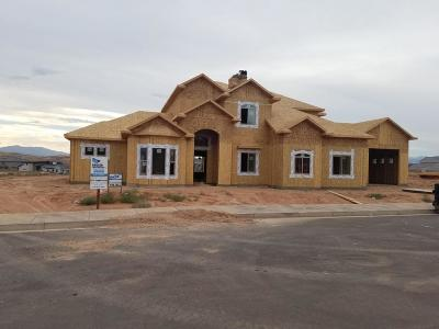 St George Single Family Home For Sale: 4102 S Little Valley