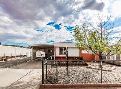 Washington Single Family Home For Sale: 476 E Angie Ln