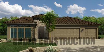 Ivins, Santa Clara, St George, Washington Single Family Home For Sale: 4169 S Sparrow Hawk Dr
