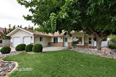 St George Single Family Home For Sale: 730 Madera