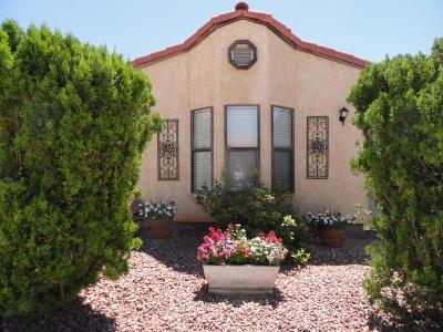 Ivins, Santa Clara, St George, Washington Condo/Townhouse For Sale: 1331 N Dixie Downs Rd #15