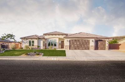 Washington Single Family Home For Sale: 201 E 735 S
