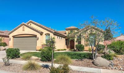 Washington Single Family Home For Sale: 2635 E Slick Rock Rd