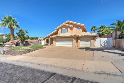 St George Single Family Home For Sale: 2093 E 140 S