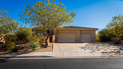 St George Single Family Home For Sale: 1705 S View Point Dr