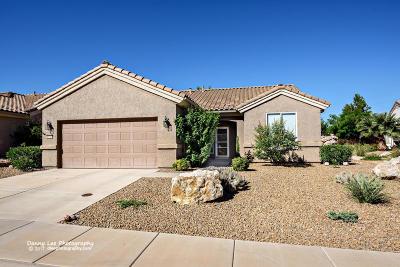 Ivins, Santa Clara, St George, Washington Single Family Home For Sale: 4172 S Datura Hill Dr
