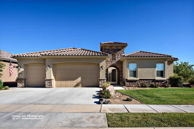 St George Single Family Home For Sale: 2110 S Vision Point Cir