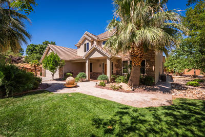 St George Single Family Home For Sale: 2443 E 2070 S
