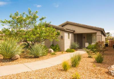 Washington Single Family Home For Sale: 3762 E Sandstone Way