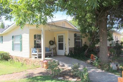 Hurricane Single Family Home For Sale: 646 W 100 N