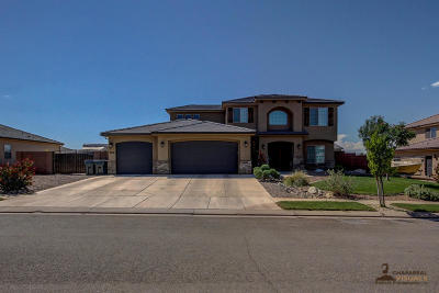St George Single Family Home For Sale: 3638 S 2870 E