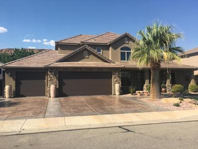 St George Single Family Home For Sale: 1638 W 3530 S