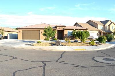 St George Single Family Home For Sale: 2948 E 110 N Cir
