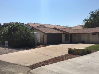 St George Single Family Home For Sale: 2284 Mountain View Cir