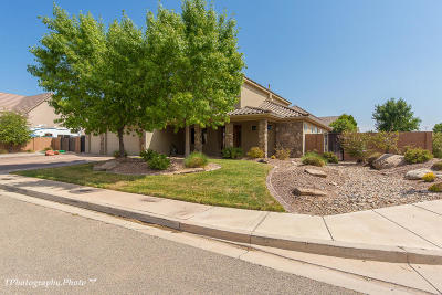 St George Single Family Home For Sale: 2817 S 2460 E