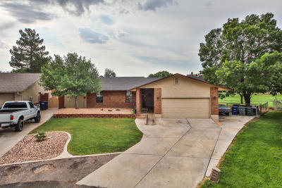 St George Single Family Home For Sale: 2189 Windom Place