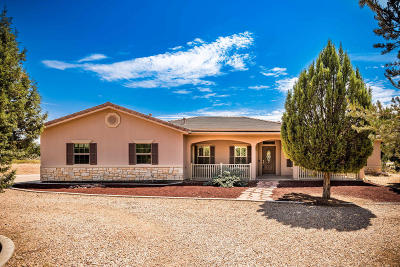 Dammeron Valley Single Family Home For Sale: 684 N Pinion Hills Dr