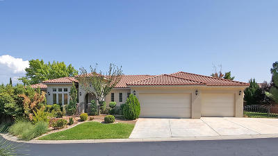 St George Single Family Home For Sale: 2255 S Putters Cir