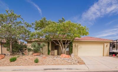 Washington Single Family Home For Sale: 1651 S Amity Ln