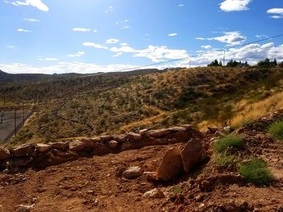 Toquerville Residential Lots & Land For Sale: 217 W Terrace Cir