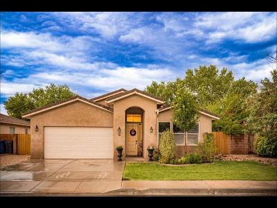 Washington Single Family Home For Sale: 1160 S Washington Fields Rd #16
