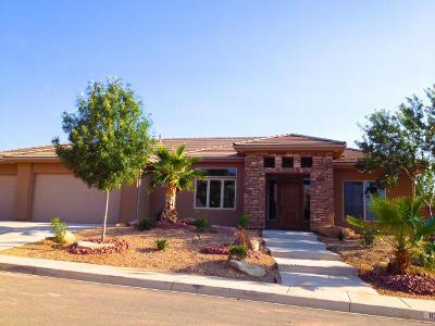 Washington Single Family Home For Sale: 1120 E Black Brush Dr
