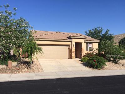 Washington Single Family Home For Sale: 3174 E Fourteen Fairway Dr