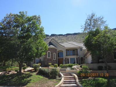 St George Single Family Home For Sale: 999 W Shadow Point Dr