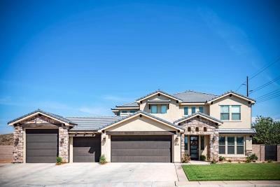 Washington Single Family Home For Sale: 545 E Washington Meadows