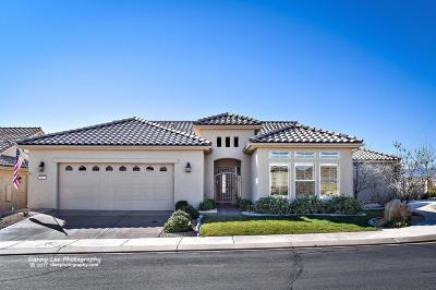 Washington County Single Family Home For Sale: 1433 W Ambassador Dr