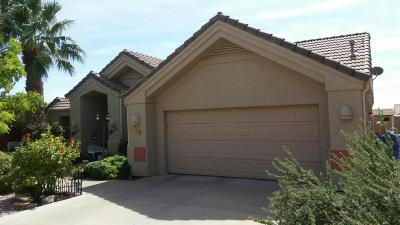 Ivins Single Family Home For Sale: 368 E 170 S
