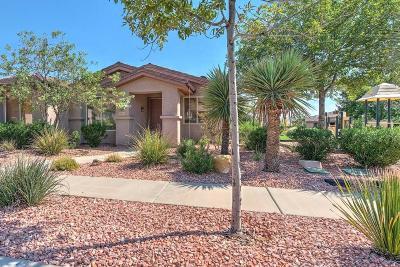 Washington Single Family Home For Sale: 3400 E Hidden Springs