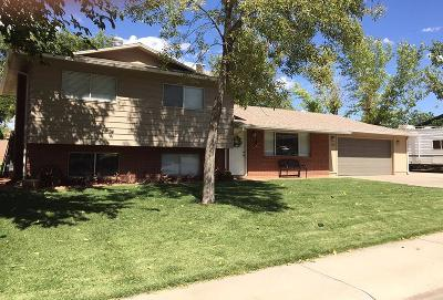 St George Single Family Home For Sale: 1242 W 710 N