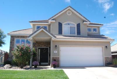 Washington Single Family Home For Sale: 2480 S 400 W