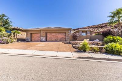 St George Single Family Home For Sale: 1962 N Cascade Canyon Dr