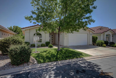 St George Single Family Home For Sale: 2050 W Canyon View Dr #243