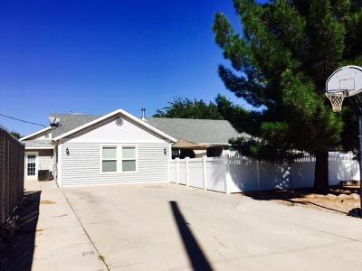 Washington Single Family Home For Sale: 161 E 400 S