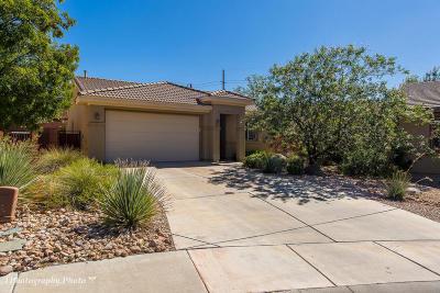 Washington Single Family Home For Sale: 924 N Echo