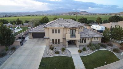 Washington Single Family Home For Sale: 217 E Stonehedge Dr