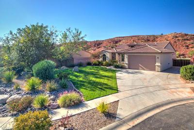 Washington Single Family Home For Sale: 3075 E Autumn Rose Dr