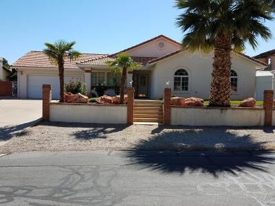 St George Single Family Home For Sale: 770 Larkspur Rd