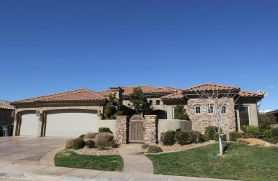 St George Single Family Home For Sale: 1146 W 2320 S