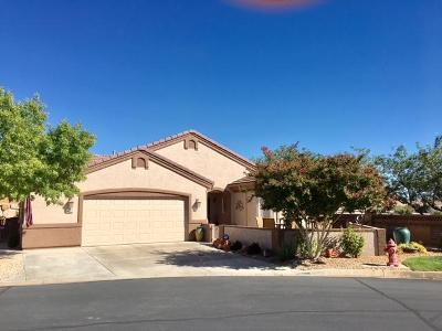 Washington County Single Family Home For Sale: 4527 Secret Springs Dr